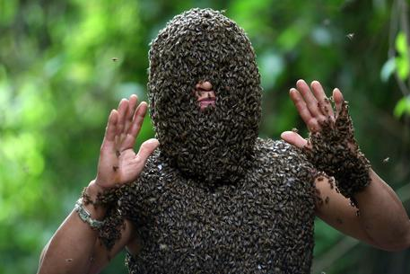 epa06002586 Bee keeper Bui Duy Nhat stands while thousands of wild bees land on his body, in Nua Ngam commune, Dien Bien province, Vietnam, 26 May 2017 (issued 01 June 2017). Nhat, 41, is known as one of a few people in Vietnam who can engage in bee bearding. Nhat began to get acquaintanced with wild bees, learn their activities and try to interact with them in 1993. Without using any protective gear, apart from covering his ears, Nhat can gather the wild bees in about 20 minutes, he can even talk and move while letting his face and a part of the body be covered with thousands of wild bees. According to Nhat, in order to attract the wild bees, he captures the queen bee and keeps her on his person, which causes members of the bee hive to land on his body.  EPA/PHAM NGOC THANH